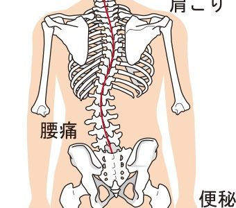 なぜ「首・背骨・骨盤」が,ゆがむと身体が不調になるのか?
